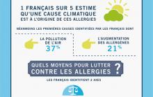 Infographie : allergies et climat