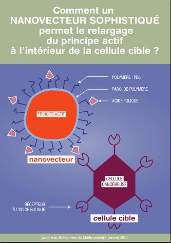 Découvrez la nanomédecine en images et vidéo avec le Leem