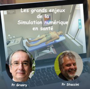 Les grands enjeux de la simulation numérique en santé